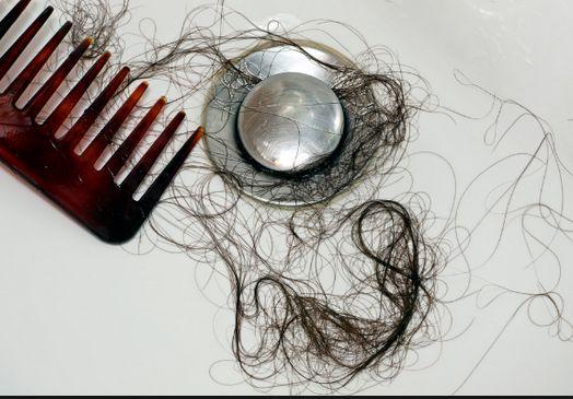 春の抜け毛対策