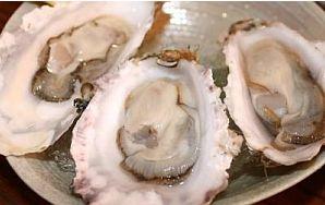 髪にいい食べ物は牡蠣