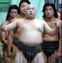 相撲取り・太閤丸