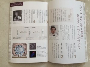 M-1育毛ミストの育毛ガイドブック