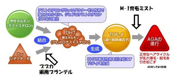 M-1育毛ミストとブブカの育毛効果の比較