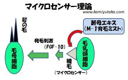 M-1育毛ミストのマイクロセンサー理論
