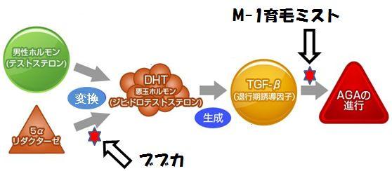 M-1育毛ミストとブブカの有効性の比較