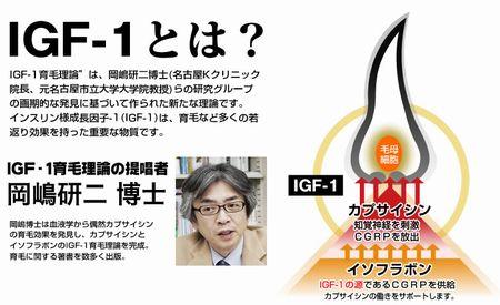 IGF-1の育毛理論