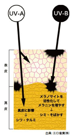 紫外線対策によるブリーチがサンブリーチです