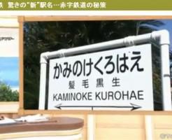 「かみのけくろはえ」は銚子電鉄の髪毛黒生の駅名