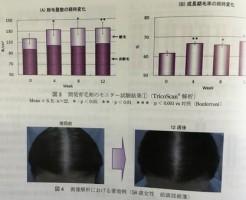 サントリーのポリフェノールの育毛効果の科学論文