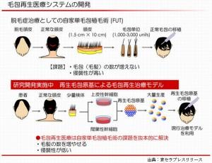 京セラは理研と頭髪の再生医療を開始し2020年の実用化を目指す