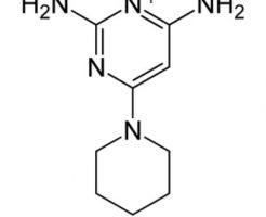 リグロEX5のロート製薬はミノキシジルの新しい発毛作用を発見