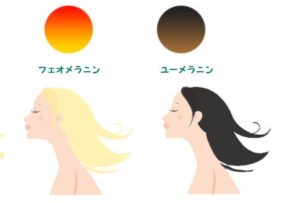 紫外線で髪の毛がブリーチされるサンブリーチは大きなダメージを与えます
