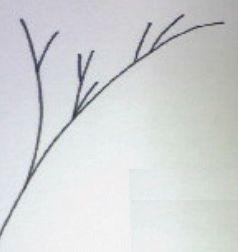 髪の毛のダメージは枝毛の原因